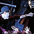 Cobra Starship & Friday Night Boys - 0241