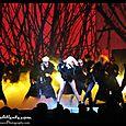 Lady Gaga at The Fox-  (7)